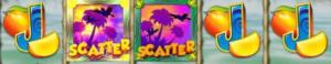 Wild ja scatter symbolit