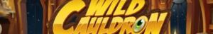 Quickspinin peliä testattavaksi - Wild Cauldron